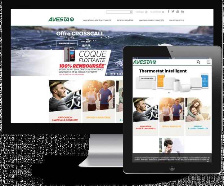 Site Avesta